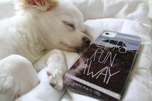 スマホ充電は反対向きで寝る